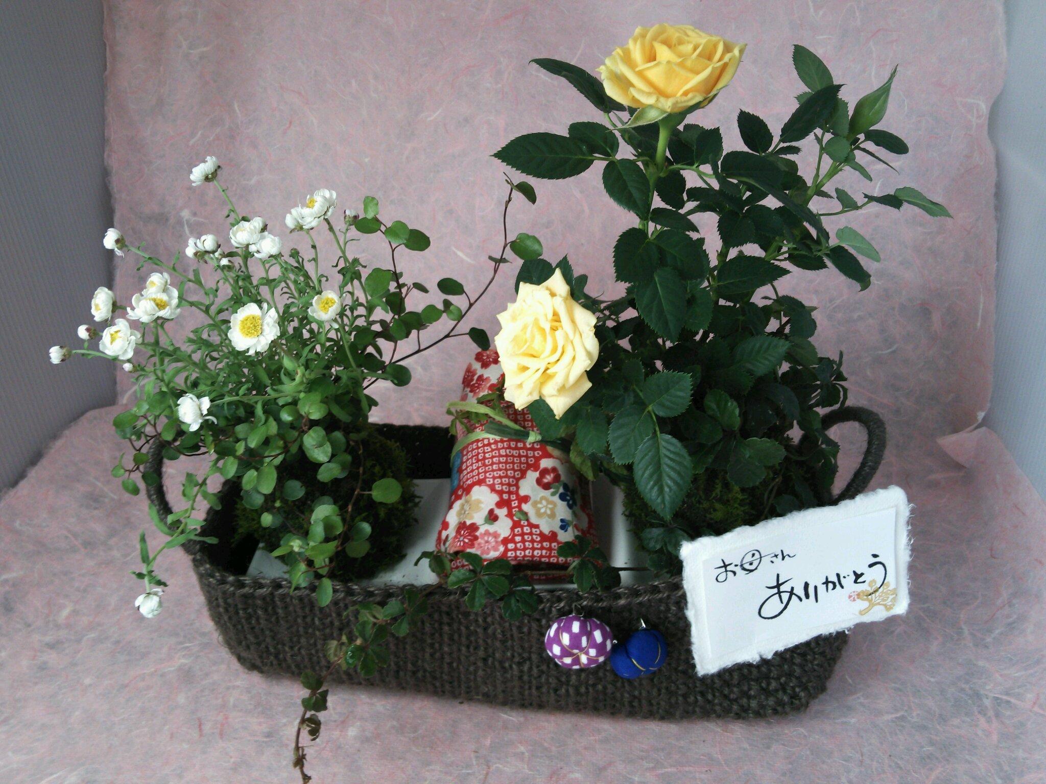 母の日のプレゼント企画